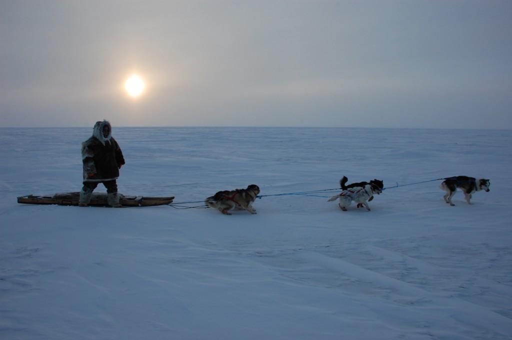 George Konana, leading his dog-team