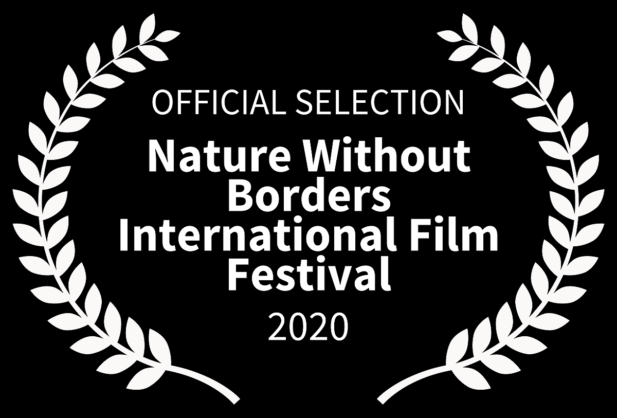 The Blinding Sea at the Nature Without Borders Film Festival