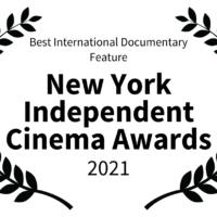 Best International Documentary Feature in New York